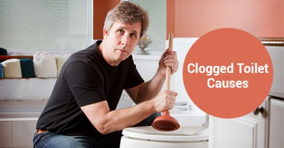 Clogged Toilet Causes